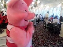 Florida 2016 (Elysia in Wonderland) Tags: disney world orlando florida elysia holiday 2016 magic kingdom crystal palace dinner winnie pooh characters dining plan buffet piglet meet greet straw fight funny