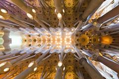 Day 190-365 Sagrada Familia (giuliomeinardi) Tags: barcelona barcellona sagrada familia church chiesa gaudi architecture architettura arte art canon 12mm sigma giulio meinardi 365 project
