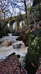For my lovely Flickr friend  David (Celebrating over 2 million views. Thank you) Tags: sacred myspecialplace water waterfall england favorite winter dell walk childhood family happy heart heartofthewoods foodformysoul energised goodtobealiveday