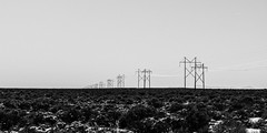 Power Transmission Taos County T (Mabry Campbell) Tags: 2016 february h5d50c hasselblad mabrycampbell newmexico usa unitedstatesofamerica blackandwhite commercialphotography countryside fineart fineartphotography image landscape minimal minimalism photo photograph photographer photography powerlines f10 february52016 20160205campbellb0000565 80mm sec 100 hc80