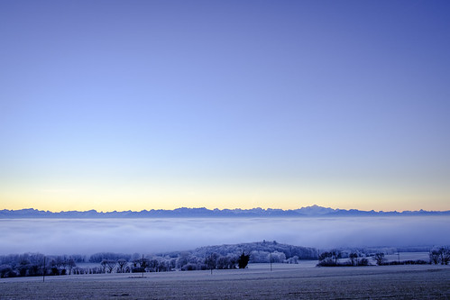 Frosty −5°C morning above the fog—just before sunrise—outside Mont-la-Ville
