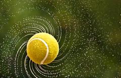 "Torque at 0.00025 seconds (""The Wanderer's Eye Photography"") Tags: 000025sec 14000 14000seconds 14000secs bangalore bangalorephotographers canon canoneos450d canoneosrebelxsi dslr digitalphotography eos india karnataka rubenalexander tennis tennisball thewandererseye wimbledon abstract backdrop background circle color concept drip drop droplet h2o highspeed highspeedphotography light liquid moment pattern speed spiral texture torque twirl twist wallpaper water waterdrops sports sportphotography fast movement fastshutterspeed physics science geometry geometric fibonacci ball wow brilliant"