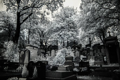 Pere-Lachaise Cemetery (erglis_m (Mick)) Tags: blackandwhite bw paris france 20d cemetery contrast canon ir blackwhite interesting canoneos20d graves infrared jimmorrison perelachaisecemetery infraredfilter