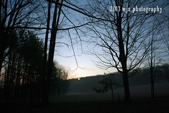 sunrise (Wendy A.) Tags: morning sky sun nature fog sunrise canon landscape morninglight spring frost canonrebelxt tioga tiogacountypa