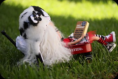Blythe A Day ~ August 2013 ~ Day 26:  SUMMER READING