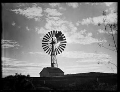 Windmill at Beltana in central Australia (State Records SA) Tags: blackandwhite windmill landscape australia historical southaustralia centralaustralia frankhurley beltana srsa staterecords staterecordsofsouthaustralia staterecordsofsa