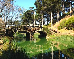 Golden Gate Park Stow Lake by Rochelle Carr