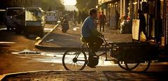 IMG_6104 (Stephen G Woo Photo journey) Tags: china street sunset shadow 2 sun toronto canada bicycle canon photography photo warm ray photographer ride mark g taxi steve photographic woo stephen yang photograph ii 5d shan northeast     gurie stephenwoo  stephengwoo sgwoo