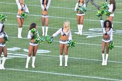 2013 Seahawks vs. Tampa Bay Buccaneers (NBWaller) Tags: seattle football cheerleaders nfl seahawks seattleseahawks fans seagals bucs tampabaybuccaneers nationalfootballleague centurylinkfield