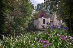 IMG_1618_HDR (xsalto) Tags: france moulin rivière bourgogne nièvre donzy nohain