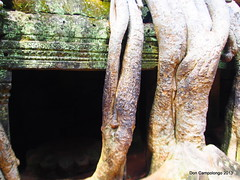 288 Ta Prohm - Tomb Raiders Temple (Don C. over 1.7 Million Views) Tags: trees temple ancient ruins cambodia buddhist excellent siemreap taprohm