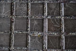 Squares and Rings - Négyzetek és gyűrűk