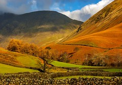 Wasdale Lake District (TK Photography) Tags: park uk wild england mountain lake english landscape countryside europe britain head district great dramatic peaceful peak sunny hills valley cumbria fells scafell lakeland tranquil wastwater rugged gable wasdale unspoilt yewbarrow