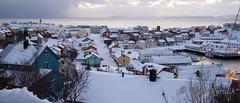 Honningsvg (kjellbendik) Tags: norge vinter himmel hus sne finnmark facebook honningsvg bygning magerya byggning naturoglandskap snesn kjellbendikgmailcom