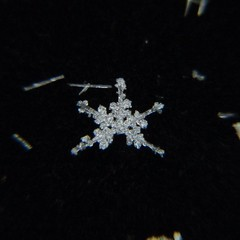 Snowflake (point and shoot) ((Jessica)) Tags: snowflake winter snow macro snowflakes flake littlebigshot macroattachmentlens
