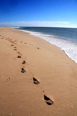 Playa en ria Formosa, Faro (gonzalo.vinagre) Tags: portugal faro playa oceanoatlantico elalgarve pasosenlaarena playaenlagosportugal pasosenplayaenlagosportugal