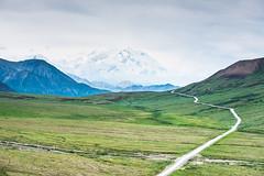 The Grand View (Vinay Vijayakumar) Tags: usa nature alaska landscape sanjose bayarea denali mckinley mtmckinley frontier 49th 2470mm nikond600