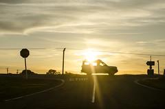 LANDRoVERing norTh  (m+m+t) Tags: sunset newzealand silhouette sh1 foxton mmt nikond5100 meredithbibersteindesign wharekinoroad