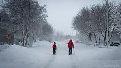 Walking in a winter wonderland (Th o r g n y r D) Tags: christmas winter snow walking artic akureyri