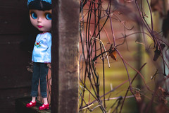 My little Eco Warrior at sundown (*DollyLove*) Tags: winter sunset canon 50mm doll bokeh blythe 28 goldie allgoldinone 70d