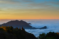 Sea of Mist, Chiang Mai (MossyMouse) Tags: life blue trees winter sea wild sky cloud mist mountain plant tree green love nature beautiful sunrise landscape thailand photography amazing nikon pretty natural cloudy magic hill hour thai planet chiangmai magichour nikond3200 amazingthailand d3200
