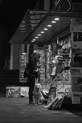 (Dailos Garca) Tags: bw woman dog white black blanco la mujer negro canarias perro tenerife laguna garcia islas kiosko 2014 quiosco dailos