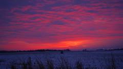 Red Sky Morning.  (again?) (1suncityboi) Tags:
