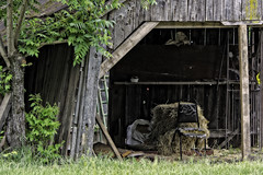 Have a Seat? (stephencurtin) Tags: california county tree rural chair shed el weathered hay dorado thechallengefactory