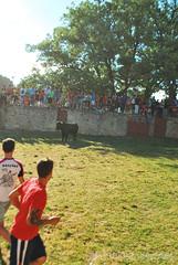Lavalenguas-2014_161