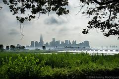 Manhattan From The Marsh (Kenny Rodriguez) Tags: newyorkcity newyork newjersey manhattan streetphotography hudsonriver morningdew libertystatepark morningmist morningfog kennyrodriguez fujifilmxpro1 kennyrodriugezphotography kennyrodz