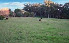 Laurel Hill Myra Vale, Wildes Meadow NSW