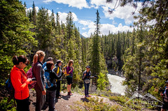 Women in the Woods   Siffleur Falls (Pursuit Adventures) Tags: canada hiking alberta westcountry siffleurfalls clearwatercounty womeninthewoods hikingadventures
