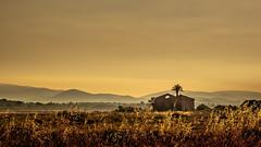 (Eric Goncalves) Tags: sky nature sunrise landscape fuji x fujifilm xseries xt1 ericgoncalves fujifilmx fujifilmxt1