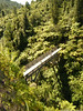Adventure (Magryciak) Tags: trip bridge newzealand fern green bike river outdoors bush ride mountainbike free adventure jungle cycle mtb northisland fujifilm wanganui bridgetonowhere
