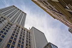 On Patrol (brev99) Tags: viewnx2 cacorrection perfecteffects10 ononesoftware cityscape buildings bird birdinflight vulture sky flag sigma185028hsm d7100