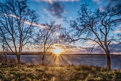 September's windy evening on Varvi (LuonnonKuvaaja) Tags: varvi raahe finland bothnian bay sea water windy storm sun sunny autumn fall trees long exposure nd27 filter rowans