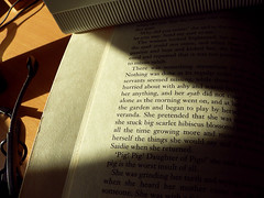 Summer (annazigalova) Tags: book pages warm