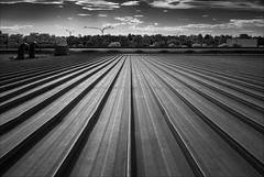 boronia-2168-ps-w (pw-pix) Tags: roof steel ribbed textured lines parallel converging convergence galvanised roofing commercial retail shops lights poles trees treetops vents ducts ducting hottinroof nocats flare lensflare contrejour evening roofscape landscape rooftop ir infrared bw blackandwhite irmodifiednikon1v1 720nmir boroniamallshoppingcentre boronia easternsuburbs outereast melbourne victoria australia