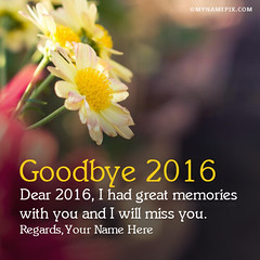 Goodbye 2016 (SamAlex1122) Tags: goodbye goodbyeyear goodbye2016 2016 pictures images happy happiness photos welcome2017 welcome welcomenewyear amazing awesome cool best top name namephotos mynamepix wishes wish event day celebration decoration happynewyear happynewyearwallpaper happynewyearimages cards ecards greetings newyearcards 2017cards 2017 newyearseve newyearsevequote quotes newyearsevesaying newyeareveimage newyearimages newyear year year2017 newyear2017 newyearsday newyearswishes