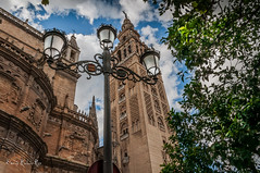 La Giralda (enricrubioros1) Tags: lagiralda sevilla catedral alminar mezquita greatsphotographers farola