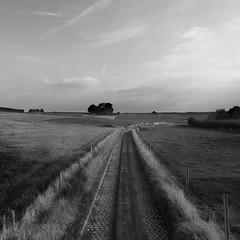 """Vossem"" (B.Graulus) Tags: photography picture blackandwhite belgium tervuren vossem belgi belgique belgica landscape landschap road sky fields nature"