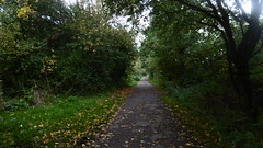 Trackbed near Newby Farm Rd, Scarborough    (Scarborough - Whitby  old railway (dave_attrill) Tags: scarborough whitby disused line trackbed route cinder path dr beeching report 1965 ner north eastern railway october 2016 scalby new farm road