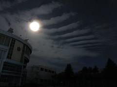 Stripes (fukapon) Tags: tweet sky canon powershots110 弘前 hirosaki 青森 aomori sghs