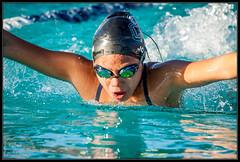 (K-Szok-Photography) Tags: ccaq circlecityaquatics southerncaliforniaswimming swimming swimmeet swimmers swimmer swim competition competitiveswimming pool watersports water socal california canon canondslr canon50d 50d kenszok kszokphotography
