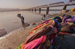 MYI_5817 (yaman ibrahim) Tags: india agra nikon d3 tajmahal yamuna morning water saree mis misty
