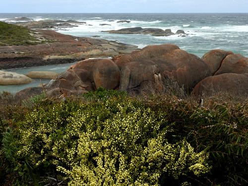 Williams Bay - Elephant Rocks