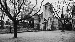 Abbaye Saint-Ruf (Phil_Heck) Tags: abbaye monochrome bw noiretblanc monument architecture avignon provence vaucluse patrimoine romanesque romanica románico romanische artroman abbey abtei abbazia klosterruine ruine ruina rovine kloster