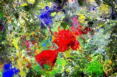 Flower Garden (Kalev Vask.) Tags: digital kalevvask postprocessed dap estonia photomanipulation digiart photoart painterly artistic creative abstract hss