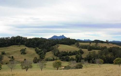 20 O'Briens Road, Mount Burrell NSW 2484