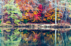 Sweetwater Creek (axi11a) Tags: atl atlanta localparks parks raina sweetwater panorama stitched reflection water creek trees